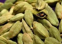 Cardamom - Elettaria cardamomum