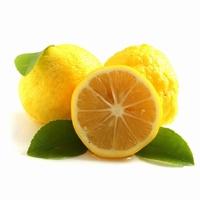 Citrus yuzu