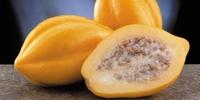 Papaya Pubescens Serena